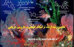 تخمین رتبه ارشد ترکیبات طبیعی و دارویی دریایی 1400تخمین رتبه ارشد ترکیبات طبیعی و دارویی دریایی 1400تخمین رتبه ارشد ترکیبات طبیعی و دارویی دریایی 1400