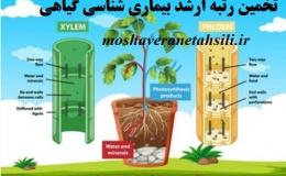 تخمین رتبه ارشد بیماری شناسی گیاهی